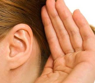 5 Fakta Unik Tentang Telinga