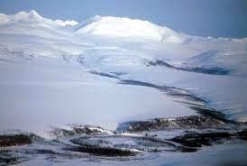 Ciri - Ciri Dan Ekosistem Biotama Tundra