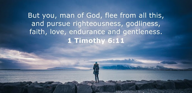 But you, man of God, flee from all this, and pursue righteousness, godliness, faith, love, endurance and gentleness.
