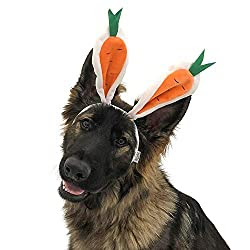 Witziges Hundekostüm