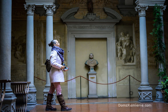 Andrea del Sarto - Chiostro dello scalzo