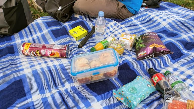 在里士滿公園 Richmond Park 內野餐