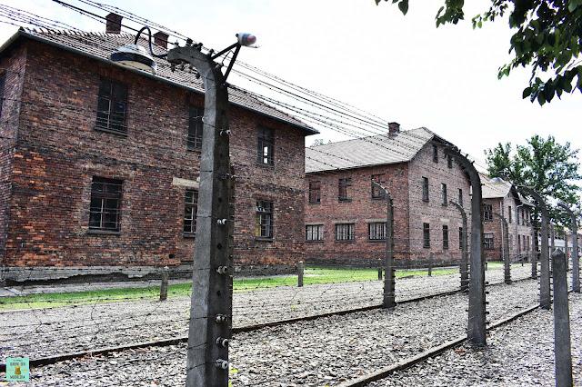 Auschwitz I, Polonia