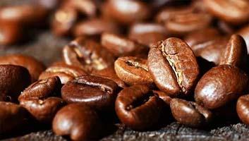Kandungan Cordyco Coffee | Kopi Robusta