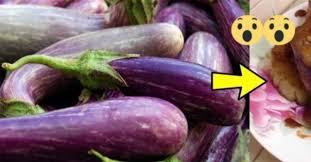99% Orang Gak Tau Khasiat Fantastis Terong! Jika Dimasak dengan 2 Sayuran Ini, Selamanya Kamu Gak Usah Ke Dokter Lagi!