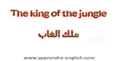 The king of the jungle    ملك الغاب