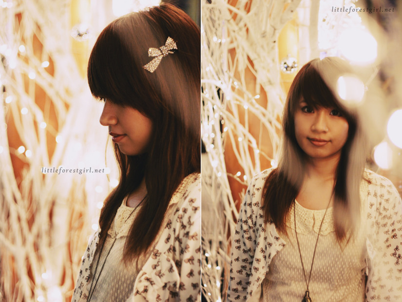 2011 photodiary | chainyan.co