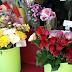 Lyra Florist Banjarbaru