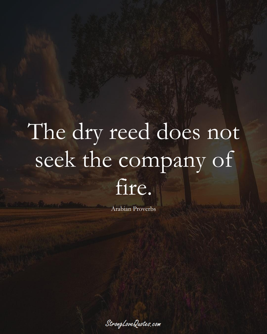The dry reed does not seek the company of fire. (Arabian Sayings);  #aVarietyofCulturesSayings