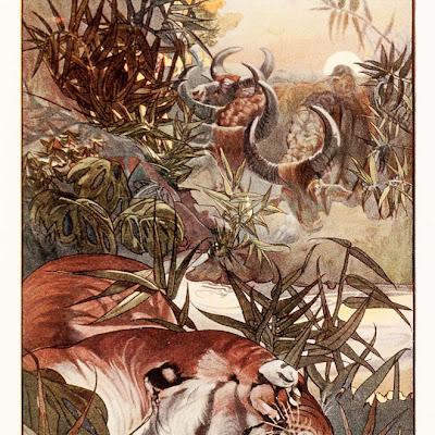 Revisiting Classic Stories, Disney's The Jungle Book, Rudyard Kipling 2016