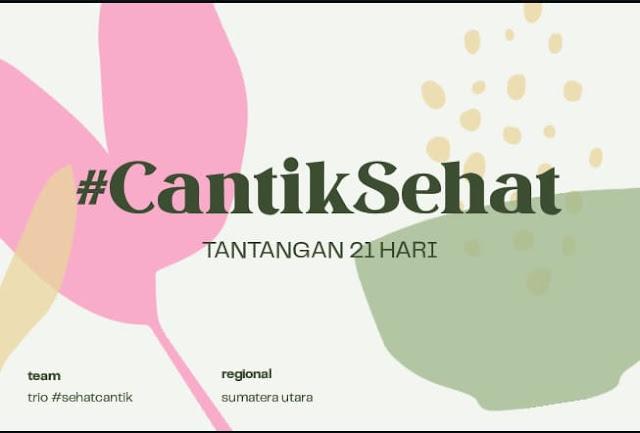 mini project saung sambut semai ip 2020