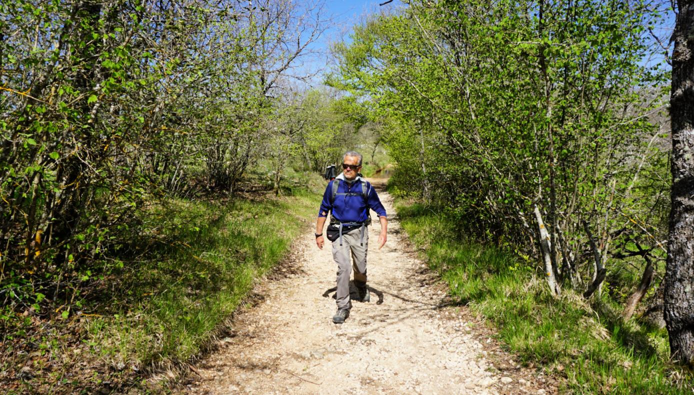 GR51 trail near St-Barnabé