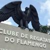 www.seuguara.com.br/incêndio/ninho do urubu/Flamengo/Ministério Público/