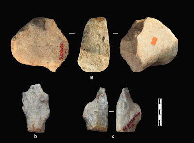 Some of the stone artifacts from Shangchen's oldest sediment layers. PHOTOGRAPH BY ZHAOYU ZHU.