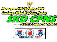 Permepan RB 24 Tahun 2019 Tentang Nilai Ambang Batas SKD CPNS Terbaru Tahun 2019/2020