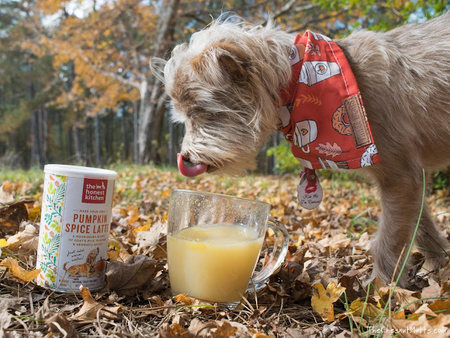 Mini Review: The Honest Kitchen Pumpkin Spice Latte for Dogs