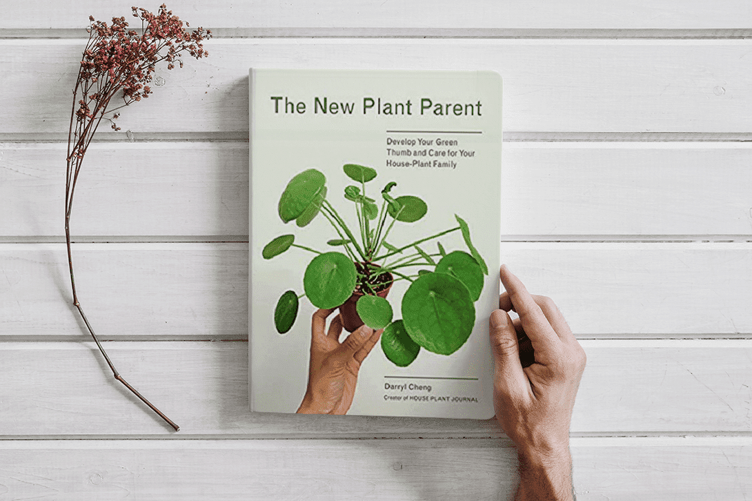 Book:New Plant Parent: Develop Your Green Thumb and Care for Your House-Plant Family (EPUB)