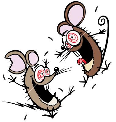 12 cung hoàng đạo ai là 'dũng sĩ' diệt chuột
