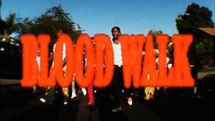 Blood Walk Lyrics - YG ft. D3SZN & Lil Wayne