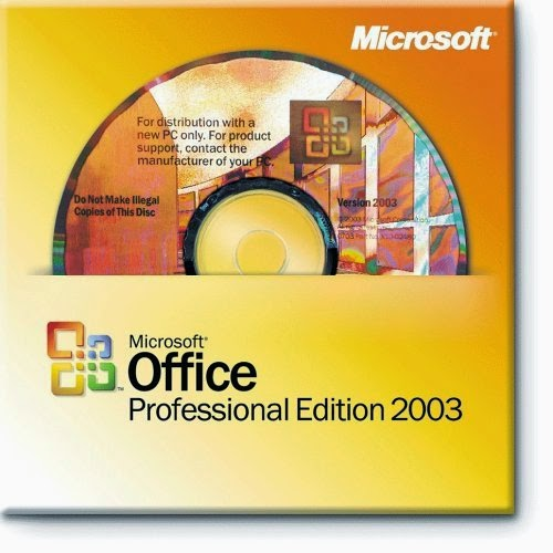 Microsoft Office Pro 2003 serial number