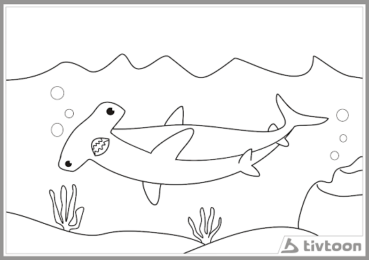 Gambar Tivtoon Google Mewarnai Gambar Hiu Kepala Martil Ikan Di