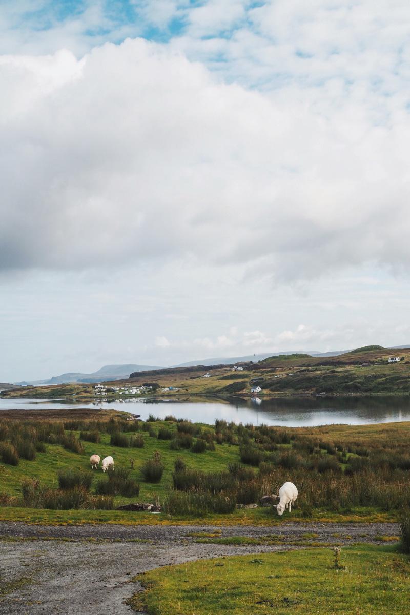 Voyage dans les Highlands en Ecosse