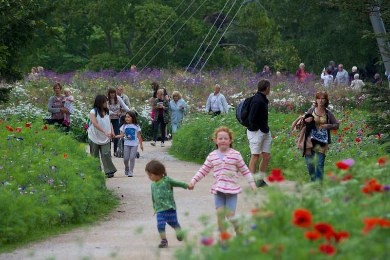 "Niños paseando entre praderas pictoricas ""Pictorial Meadows"" flores multicolor valor ornamental, profesores Nigel Dunnett,James Hitchmough"