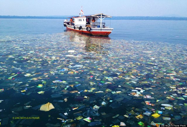ngưng dùng nilon, dọn sạch biển, dọn sạch rác, don nilon trong nha