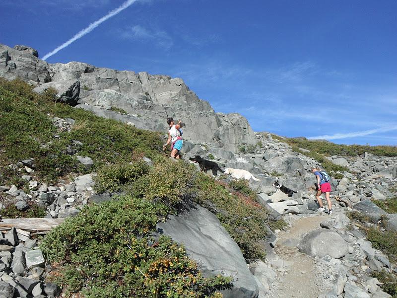 Daily Adventures Mt Tallac Trail Desolation Wilderness