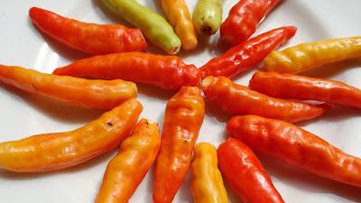 hot-peppers-capsacin-speeds-fat-burning.jpeg