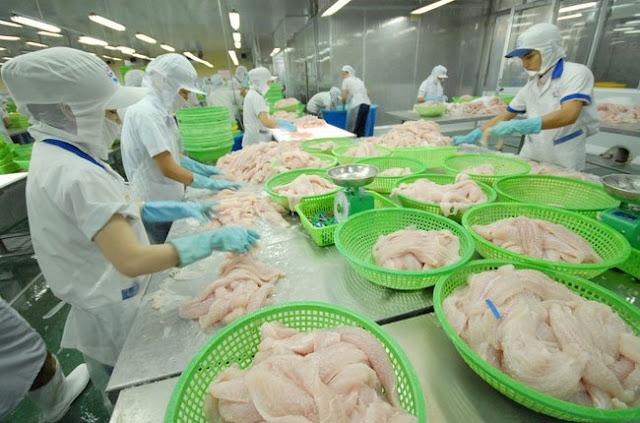 Tuyển 9 nữ làm công việc chế biến thủy sản không gia nhiệt tại Miyagi tháng 6 năm 2019