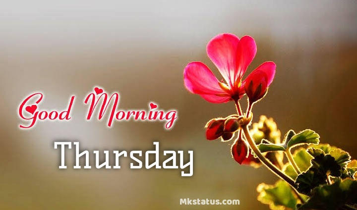 Good Morning Thursday Images