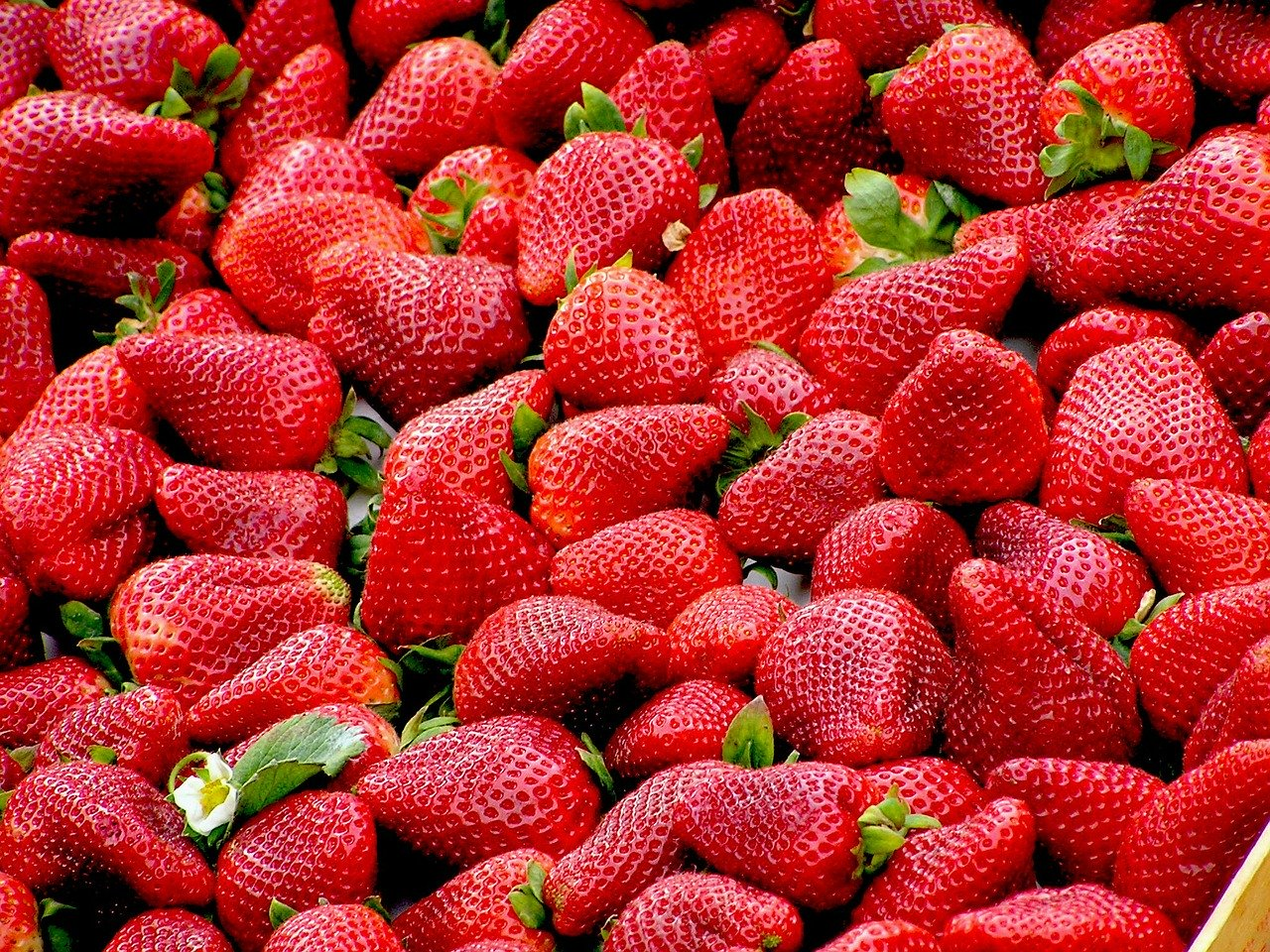 Manfaat strawberry: Pixabay