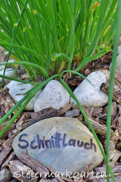 Schnittlauch-Steiermarkgarten