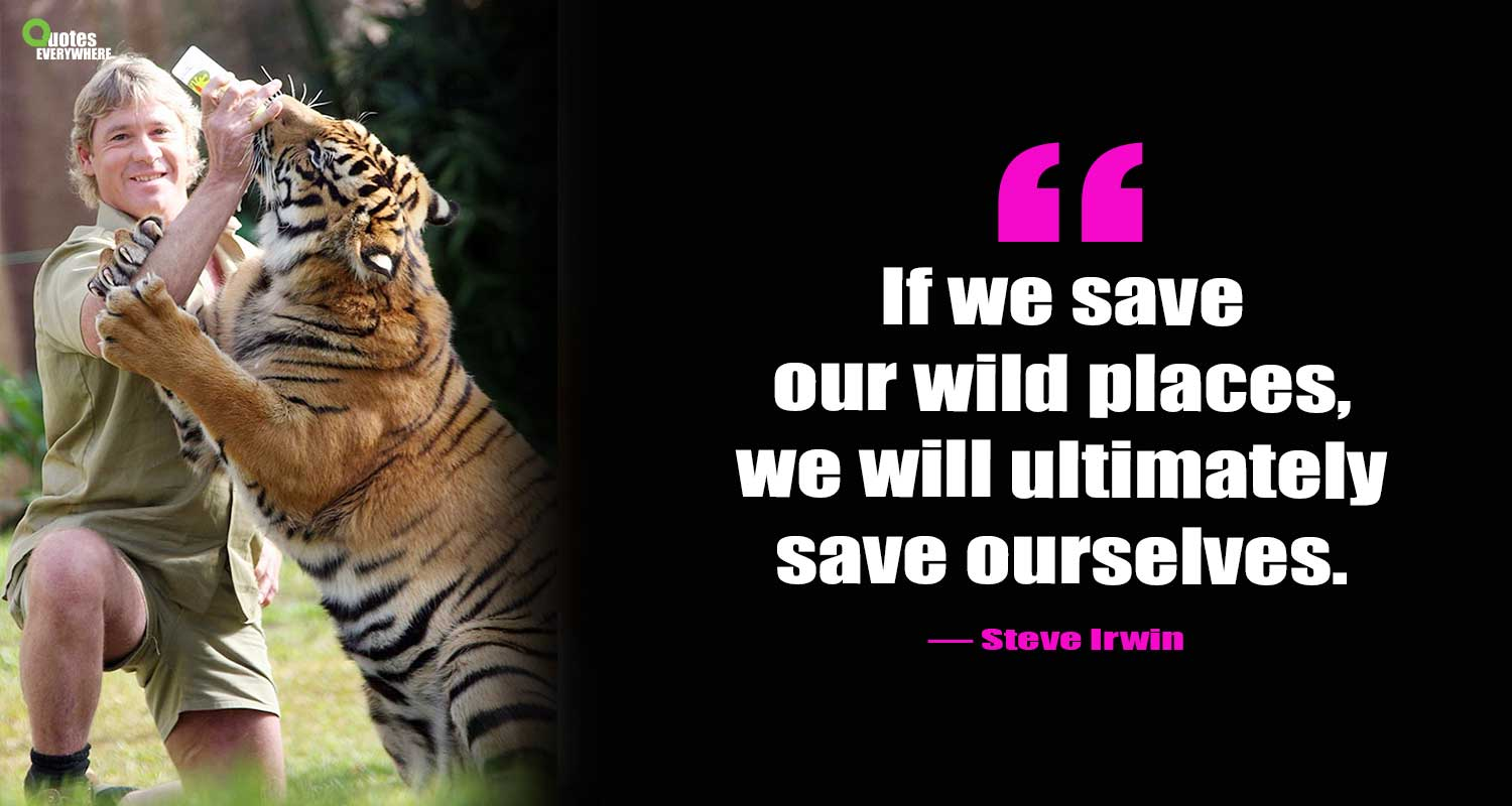 Steve Irwin Quotes That Will Change Your Life Viewpoint