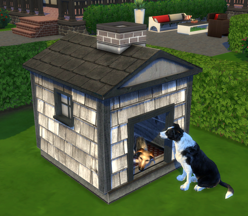 The Sims  Cats And Dogs Reactions
