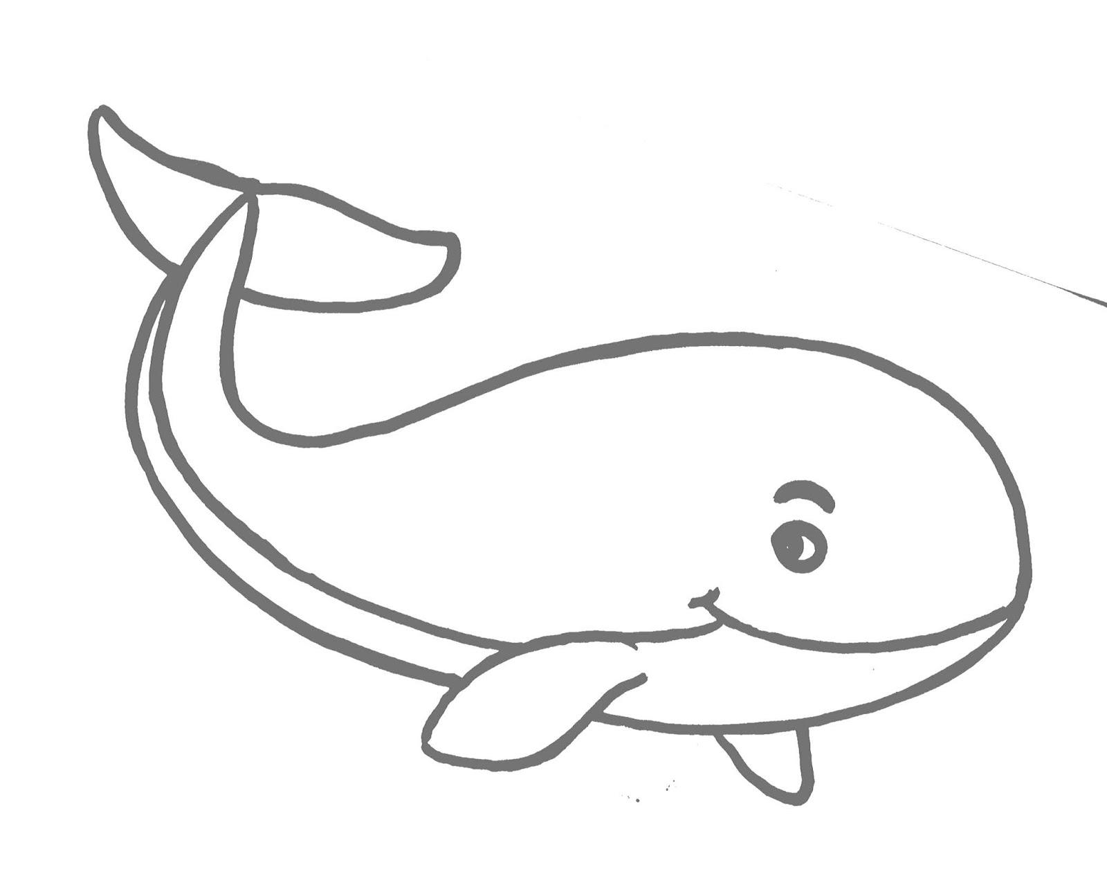 Gambar Ikan Paus Anak Sd Gambar Ikan HD