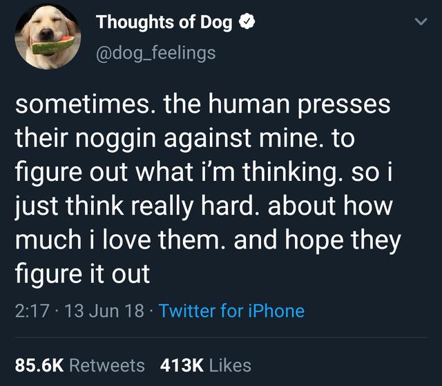 Wholesome tweet