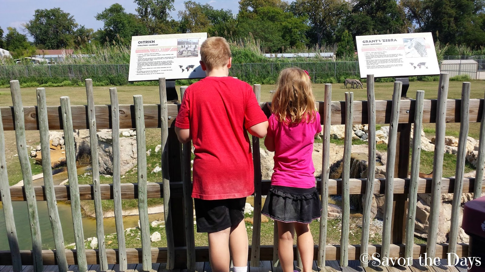 Savor The Days: Frank Buck Zoo in Gainesville