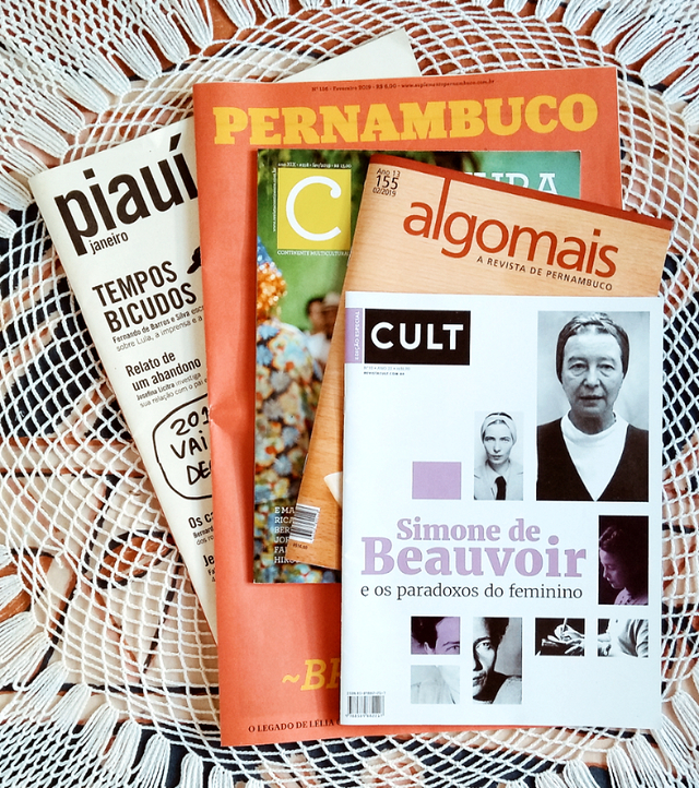 por que ler revistas blog janela literaria