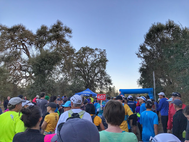 Run the Parkway 20 miler start line