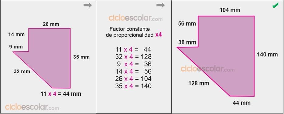 Determinar el factor constante de proporcionalidad