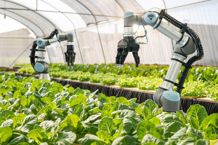 robots in Crop Monitoring And Analysis (Agricultural Robot)