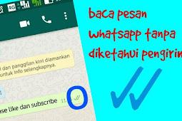 Cara Menghilangkan Centang Biru di Whatsapp, Grup & Pribadi