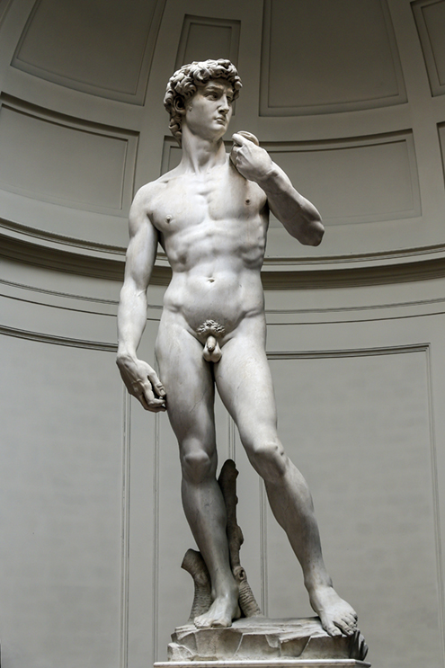 El David original de Miguel Ángel Buonarroti en la Galería de las Bellas Artes