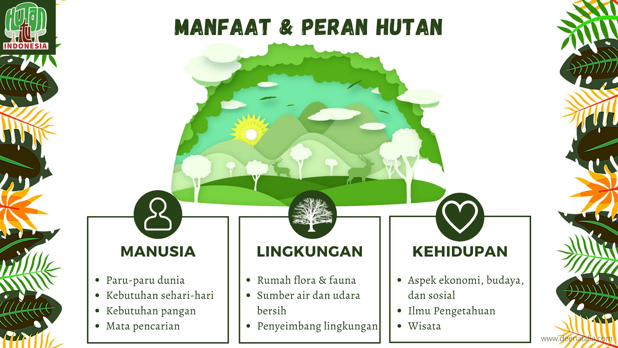 Manfaat dan Peran Hutan