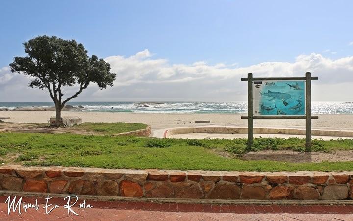 Playa de Camps Bay