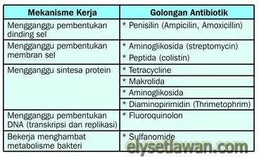 tabel mekanisme kerja antibiotik
