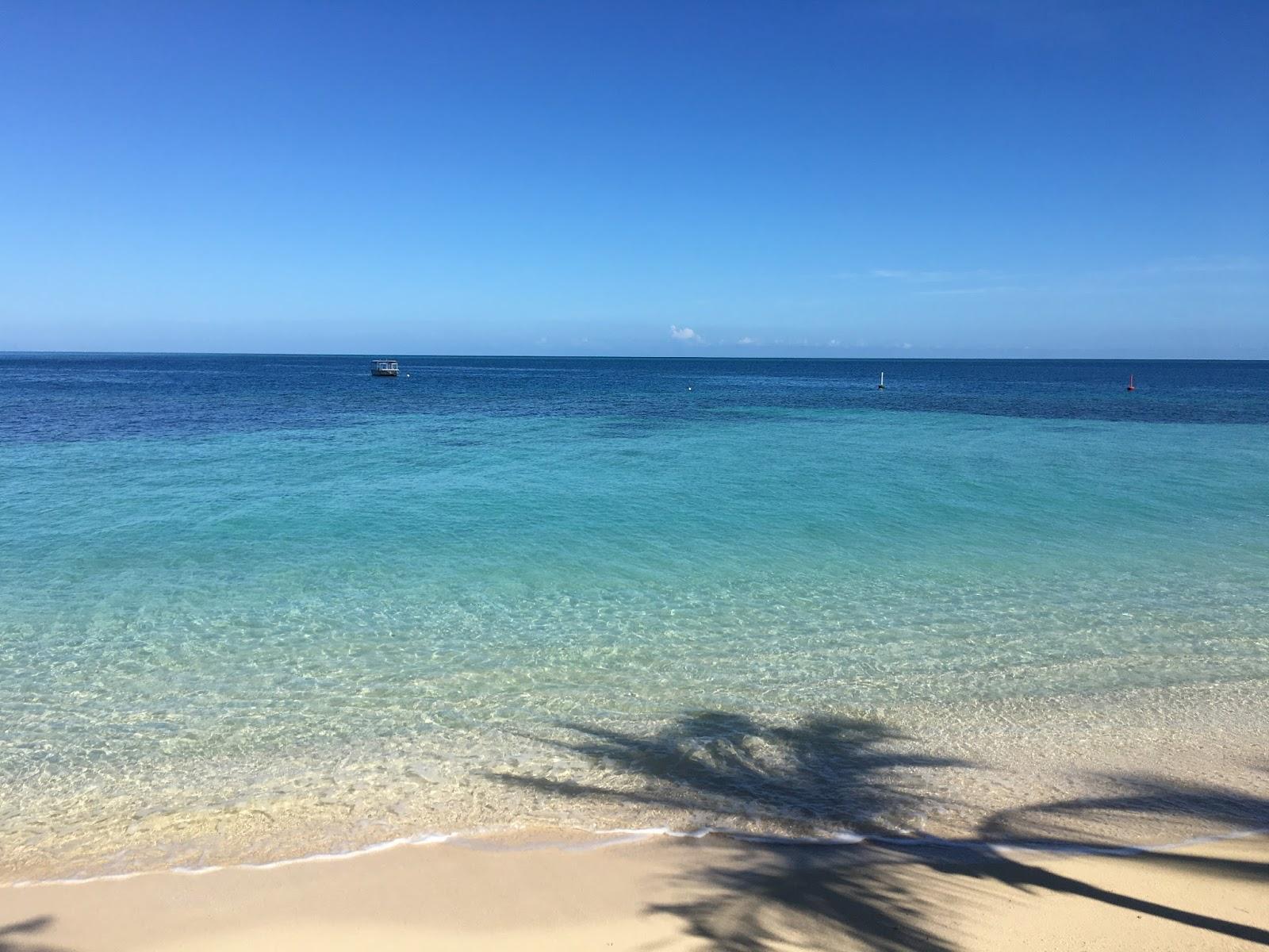 Castaway Island Fiji Day Trip