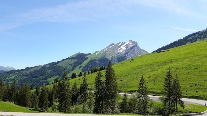 Estrada, Montanha, Colina, Árvores, Grama